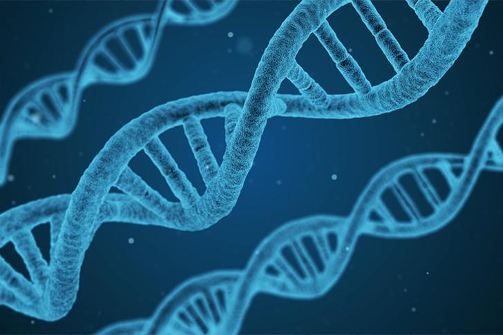 Genomics of Liver Tumors